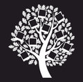 Family  genealogical tree on black background, vector Stock Images