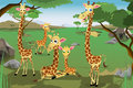 Family of giraffes a vector illustration a in savannah Stock Images