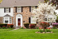 FAMILY HOUSE WITH FRONT LAWN IN SPRING Royalty Free Stock Image