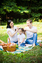 Family leisure having picnic on a park meadow hairstyling Royalty Free Stock Photo
