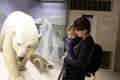 Family looking at polar bear in zoological museum Stock Images
