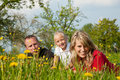 Family on meadow in spring Royalty Free Stock Photos