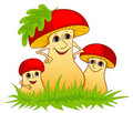 Family of mushrooms. Stock Image