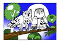 Family owls, colouring book