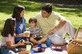 Family picnic. Royalty Free Stock Photo