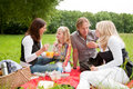 Family picnic Royalty Free Stock Photography