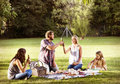 Family Picnic Outdoors Togetherness Relaxation Cheers Concept Royalty Free Stock Photo
