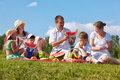 Family picnic in park Royalty Free Stock Photo