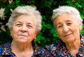 Family portrait - Two old content and happy ladies Royalty Free Stock Photo