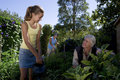 Family of three gardening daughter and father smiling at each other low angle view Royalty Free Stock Image