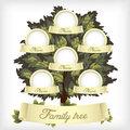 Family tree Stock Photos