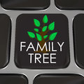 Family tree computer laptop keyboard key button research history a with the words and picture to symbolize researching your Royalty Free Stock Photography