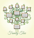 Family tree with photo frames vector illustration. Parents and children pictures, dynasty of generations Royalty Free Stock Photo