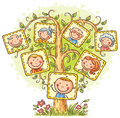 Family tree in pictures, little child with his parents and grandparents