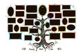 Family tree template with picture frames Royalty Free Stock Photo