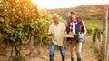 Family in vineyard celebrating harvesting grapes