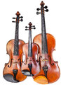 Family of violins Stock Photography