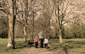 Family walk in the park (sepia) Royalty Free Stock Photos
