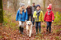 Family Walking Dog Through Winter Woodland Royalty Free Stock Photo