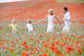 Family walking in poppy field holding hands Royalty Free Stock Photo