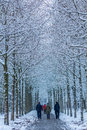 Family walking in snow covered forest