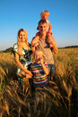 Family on wheaten field Royalty Free Stock Image