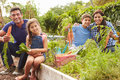 Family Working On Allotment Together Royalty Free Stock Photo