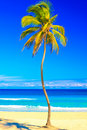 The famous cuban beach of Varadero Stock Image
