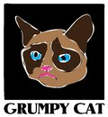 Famous grumpy cat vector drawing a creative of the celebrity meme Royalty Free Stock Image