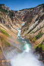 The famous lower falls in yellowstone national park on river wyoming Stock Photography