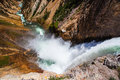 The famous lower falls in yellowstone national park on river wyoming Royalty Free Stock Photography