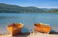 Famous popular lake titisee black forest germany Royalty Free Stock Photo
