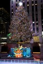 The famous Rockefeller Center Christmas Tree and Prometheus Statue at Rockefeller Center Royalty Free Stock Photo