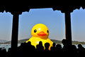 The famous rubber duck is exhibited at the summer palace beijing october designed by dutch artist florentijn hofman on october in Royalty Free Stock Image