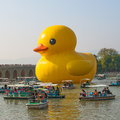 The famous rubber duck is exhibited at the summer palace beijing october designed by dutch artist florentijn hofman on october in Stock Photography