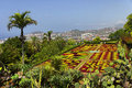 Famous Tropical Botanical Gardens in Funchal Royalty Free Stock Photo
