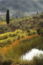 Famous tuscany landscapes in italy near the florence Royalty Free Stock Images