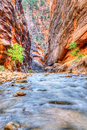 Famous Virgin River Royalty Free Stock Photo