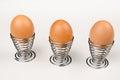 Fancy egg cups hardboiled eggs in Stock Photo