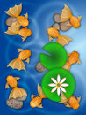 Fancy Goldfish Swimming in Pond Illustration Royalty Free Stock Photo