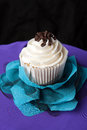 Fancy gourmet cupcake close up of a decadent with chocolate and vanilla frosting Stock Images