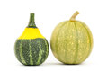 Fancy pumpkin on white background Stock Images