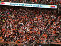 Fans stand and cheer during World series game Stock Image