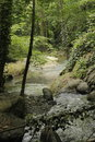 A fantastic creek view photo from turkey sapanca Stock Photo