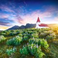 Fantastic sunset view of Vikurkirkja christian church in blooming lupine flowers Royalty Free Stock Photo