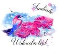 Fantastic Water Color Bird