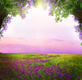 Fantasy  background . Magic forest. Royalty Free Stock Photo