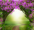 Fantasy background . Magic forest with road