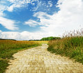 Fantasy background yellow brick road through green meadows Royalty Free Stock Photo