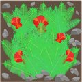 Fantasy field of blooming fern Royalty Free Stock Photo